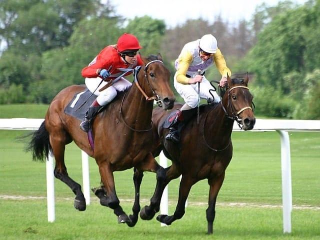 Horse Racing Dungarvan Pub
