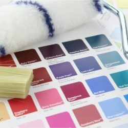 Painter Decorator Waterford City