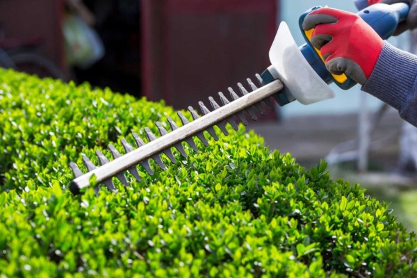 Hedge Trimming and Gardening Services - Murphys Nationwide Power Washing and Gardening